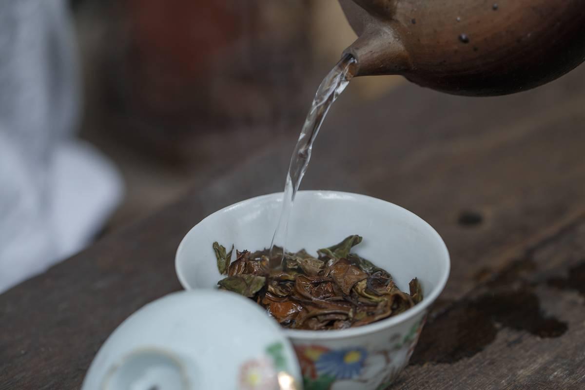 福建福鼎白茶的8大功效与作用,外加忌讳群体