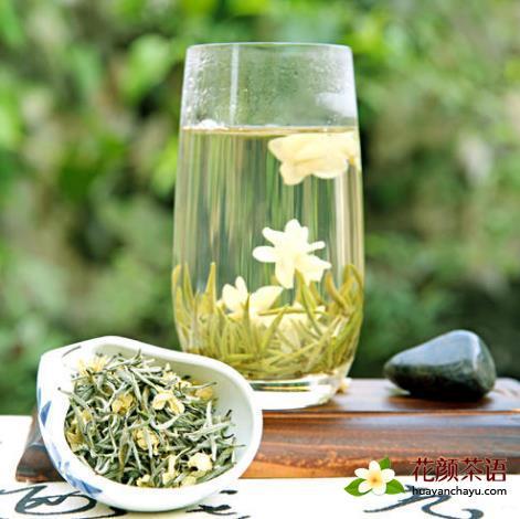 详解:茉莉花茶的六大品种分类及特点